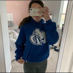 Drake college hoodie